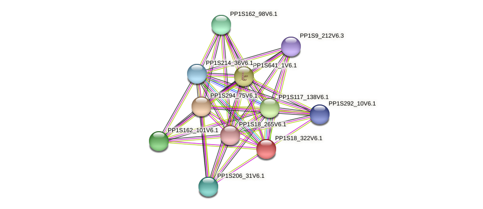 PP1S18_322V6.1 protein (Physcomitrella patens) - STRING interaction network