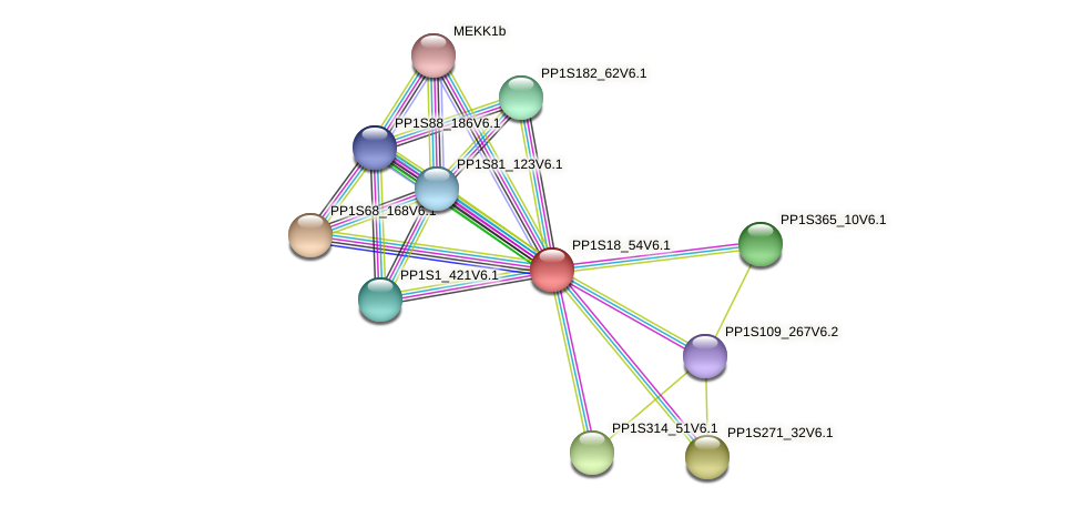 PP1S18_54V6.1 protein (Physcomitrella patens) - STRING interaction network