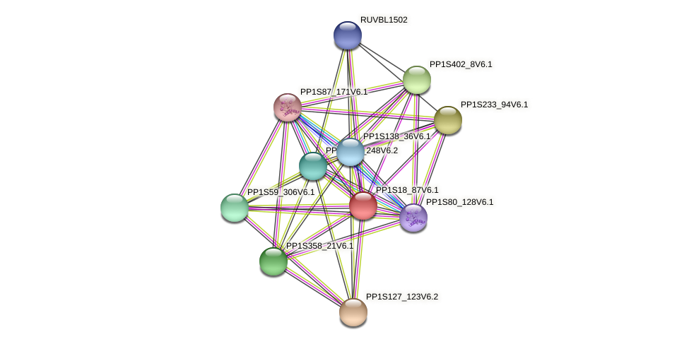 PP1S18_87V6.1 protein (Physcomitrella patens) - STRING interaction network