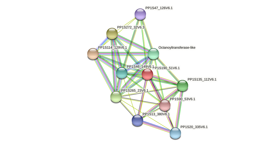PP1S190_51V6.1 protein (Physcomitrella patens) - STRING interaction network