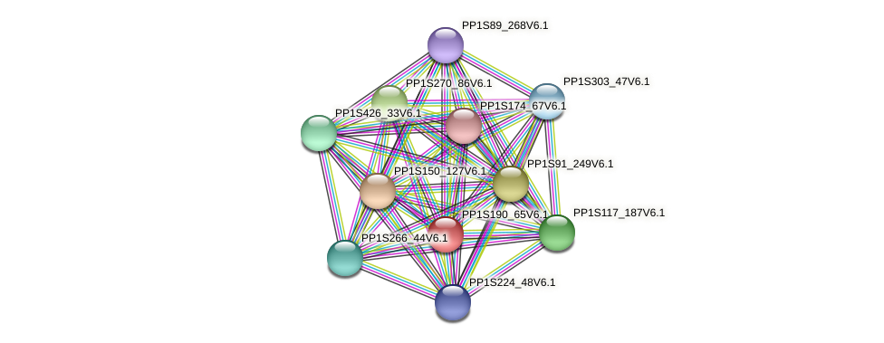 PP1S190_65V6.1 protein (Physcomitrella patens) - STRING interaction network