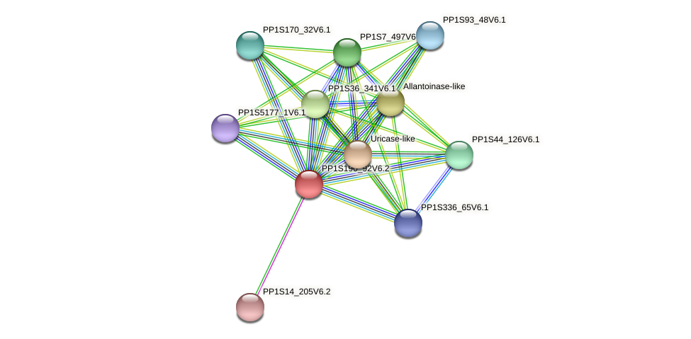 PP1S190_92V6.2 protein (Physcomitrella patens) - STRING interaction network
