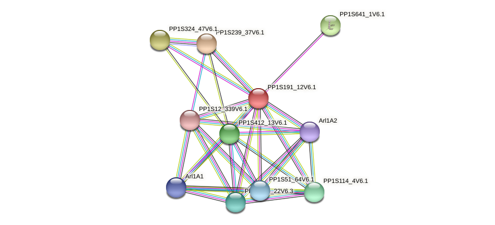 PP1S191_12V6.1 protein (Physcomitrella patens) - STRING interaction network