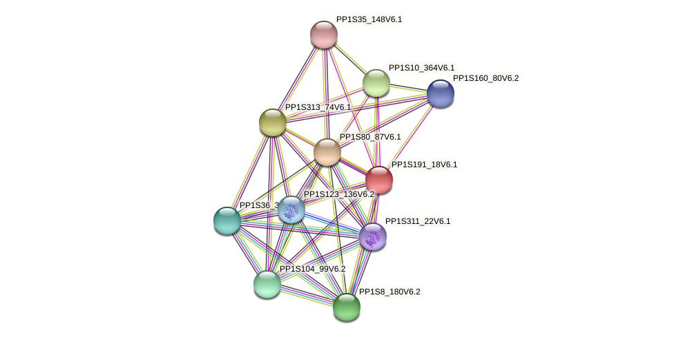 PP1S191_18V6.1 protein (Physcomitrella patens) - STRING interaction network
