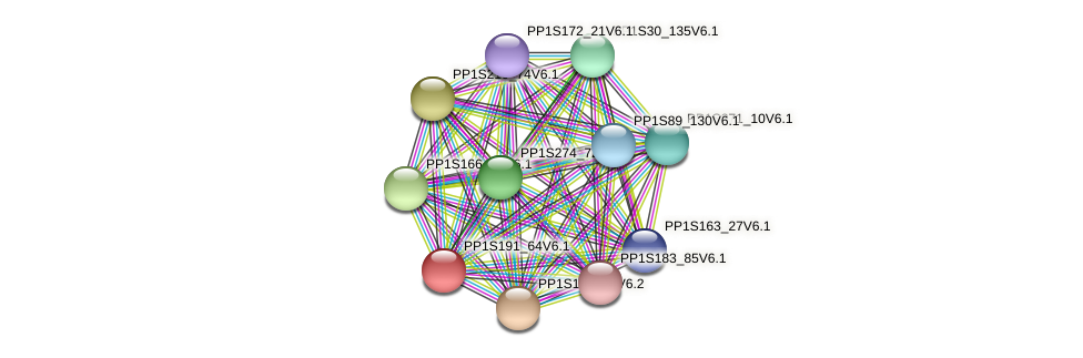 PP1S191_64V6.1 protein (Physcomitrella patens) - STRING interaction network