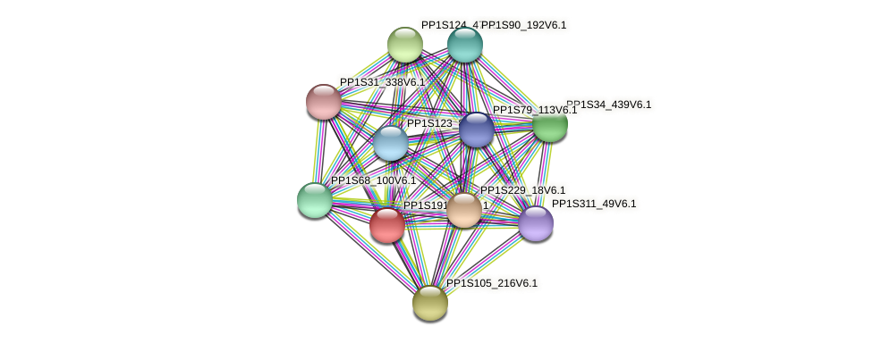 PP1S191_77V6.1 protein (Physcomitrella patens) - STRING interaction network