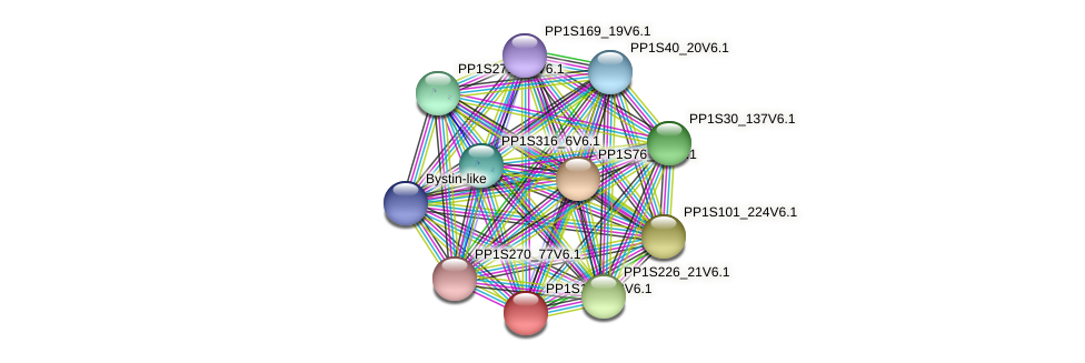 PP1S191_78V6.1 protein (Physcomitrella patens) - STRING interaction network