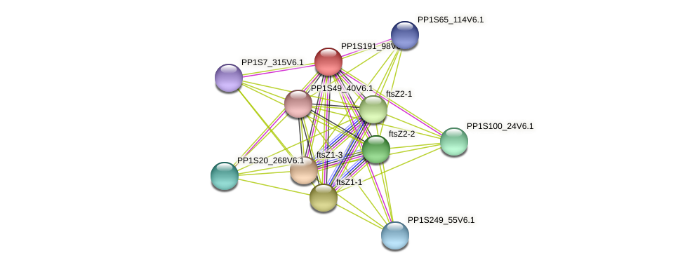 PP1S191_98V6.1 protein (Physcomitrella patens) - STRING interaction network