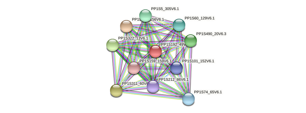 PP1S192_49V6.1 protein (Physcomitrella patens) - STRING interaction network