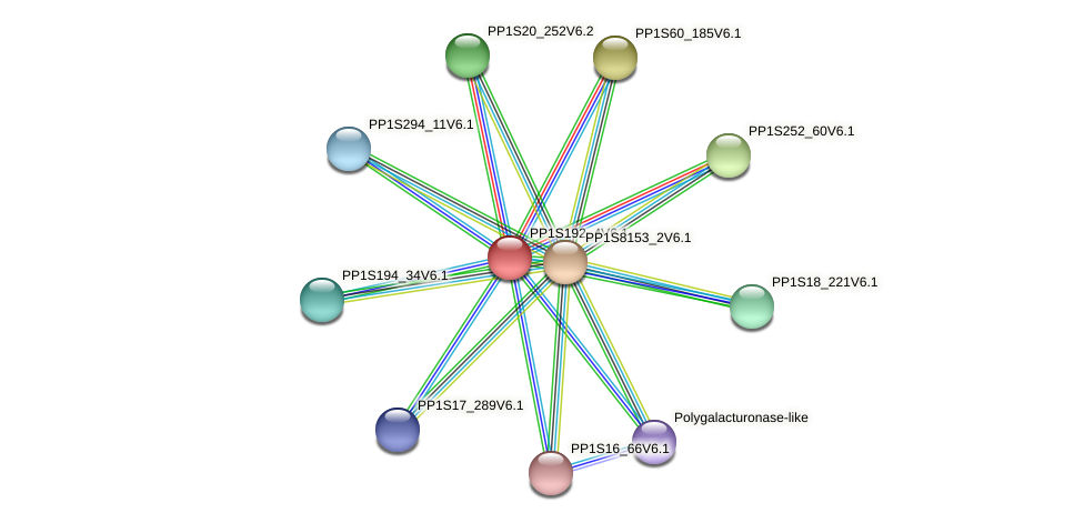 PP1S192_4V6.1 protein (Physcomitrella patens) - STRING interaction network