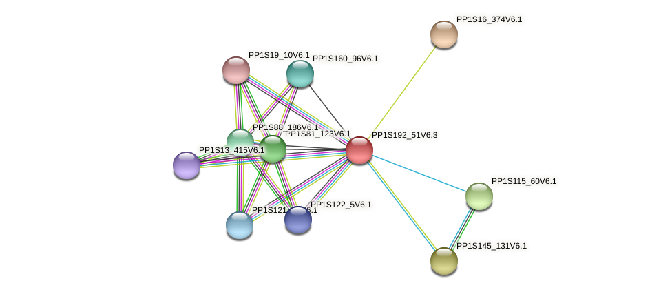 PP1S192_51V6.3 protein (Physcomitrella patens) - STRING interaction network