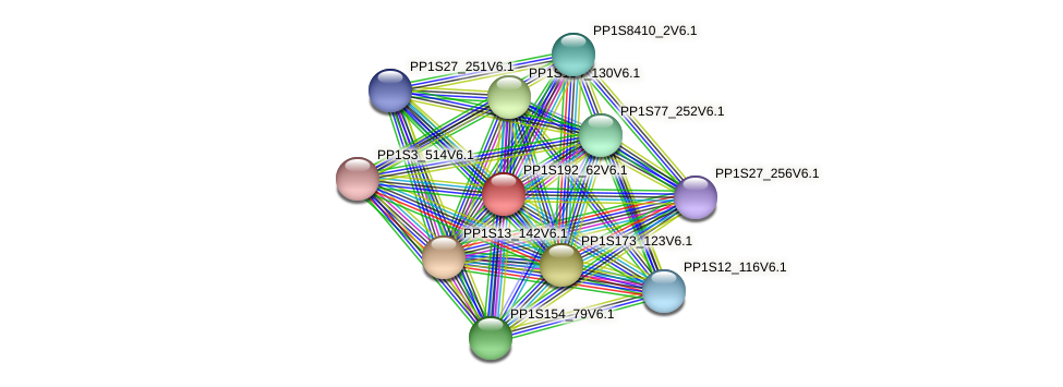 PP1S192_62V6.1 protein (Physcomitrella patens) - STRING interaction network