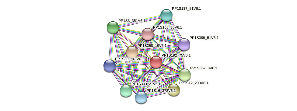 PP1S192_75V6.1 protein (Physcomitrella patens) - STRING interaction network