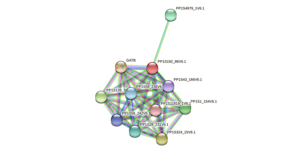 PP1S192_86V6.1 protein (Physcomitrella patens) - STRING interaction network