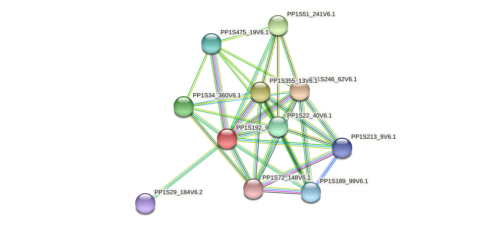 PP1S192_93V6.1 protein (Physcomitrella patens) - STRING interaction network