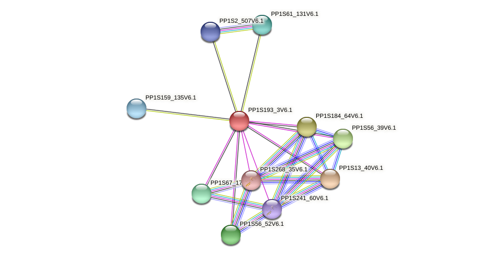 PP1S193_3V6.1 protein (Physcomitrella patens) - STRING interaction network