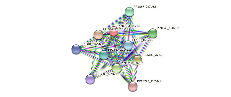 PP1S193_84V6.1 protein (Physcomitrella patens) - STRING interaction network