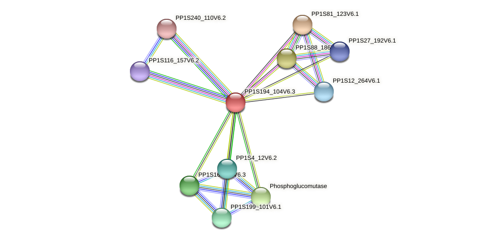 PP1S194_104V6.3 protein (Physcomitrella patens) - STRING interaction network