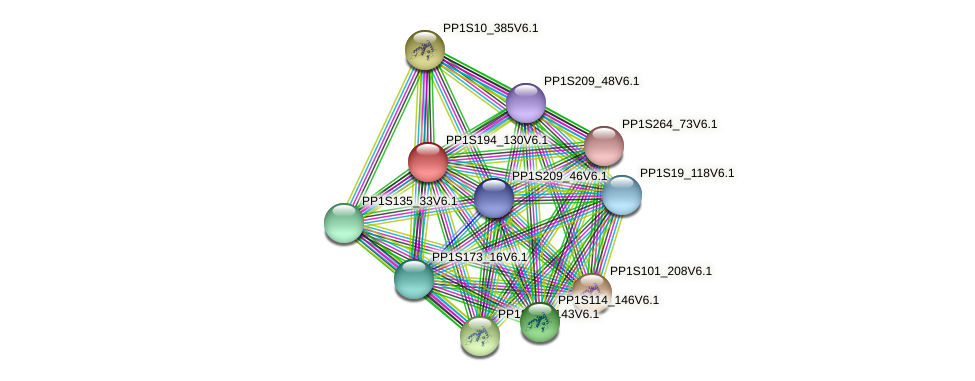 PP1S194_130V6.1 protein (Physcomitrella patens) - STRING interaction network