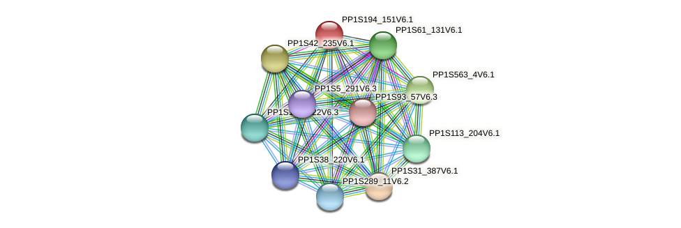PP1S194_151V6.1 protein (Physcomitrella patens) - STRING interaction network