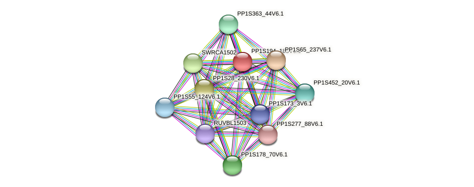 PP1S194_183V6.1 protein (Physcomitrella patens) - STRING interaction network