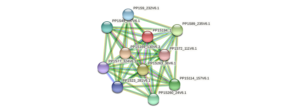 PP1S194_198V6.1 protein (Physcomitrella patens) - STRING interaction network