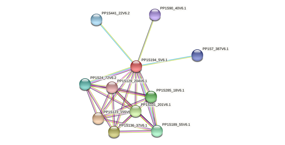 PP1S194_5V6.1 protein (Physcomitrella patens) - STRING interaction network
