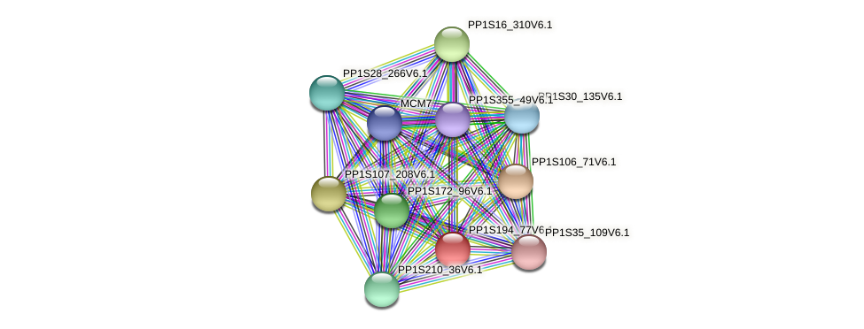 PP1S194_77V6.1 protein (Physcomitrella patens) - STRING interaction network