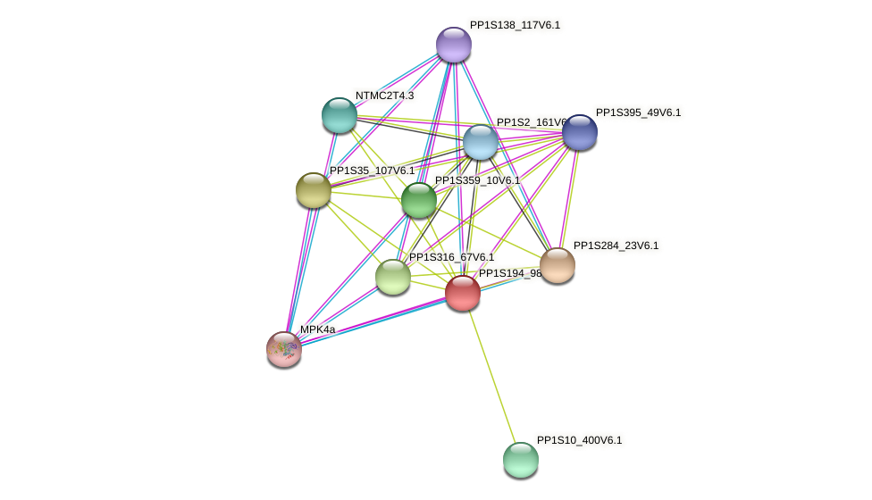 PP1S194_98V6.1 protein (Physcomitrella patens) - STRING interaction network