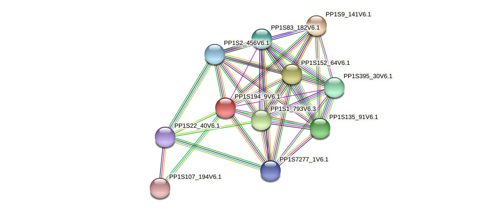 PP1S194_9V6.1 protein (Physcomitrella patens) - STRING interaction network