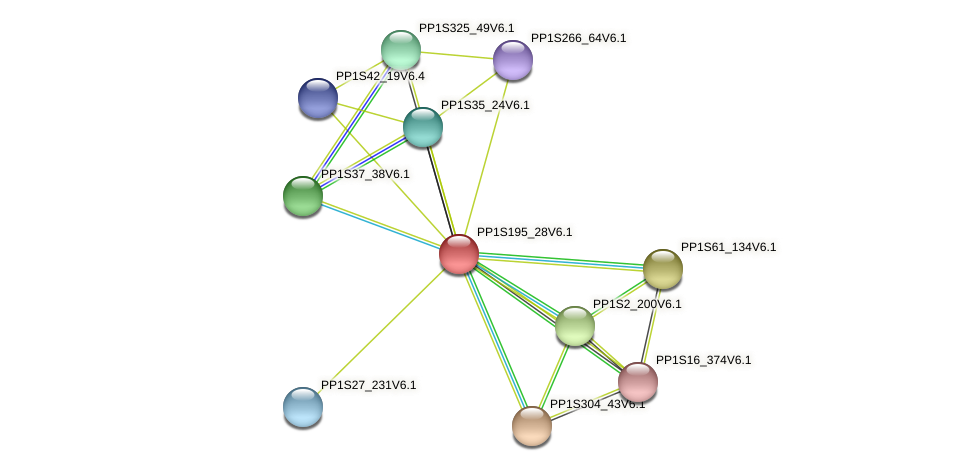 PP1S195_28V6.1 protein (Physcomitrella patens) - STRING interaction network