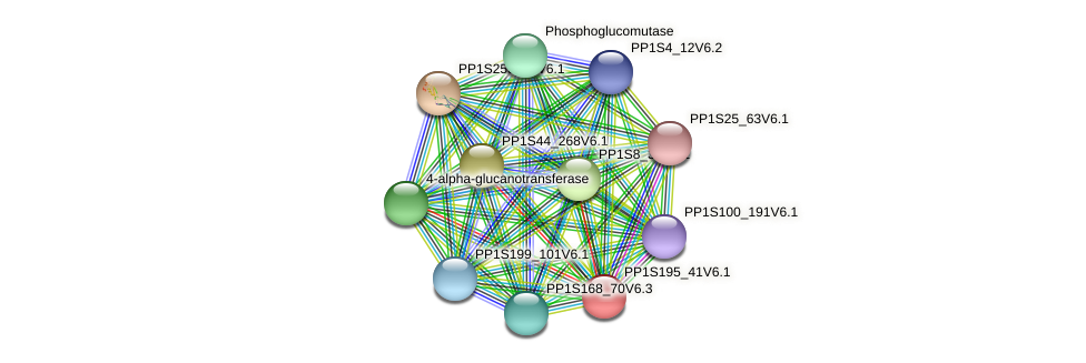 PP1S195_41V6.1 protein (Physcomitrella patens) - STRING interaction network