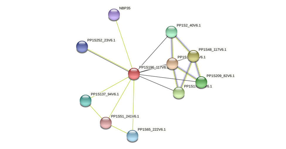 PP1S196_117V6.1 protein (Physcomitrella patens) - STRING interaction network