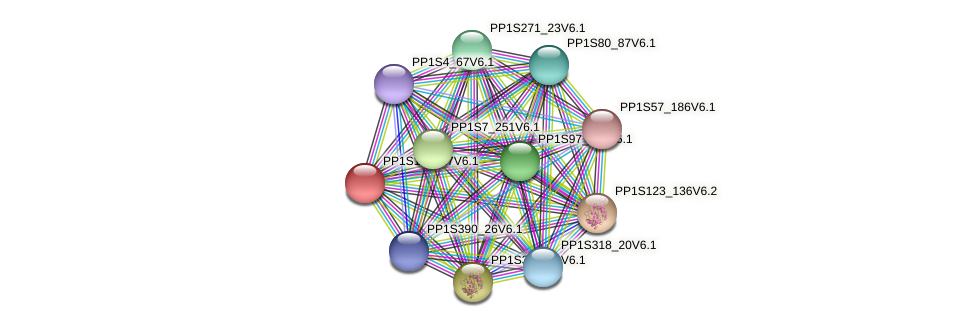PP1S196_17V6.1 protein (Physcomitrella patens) - STRING interaction network