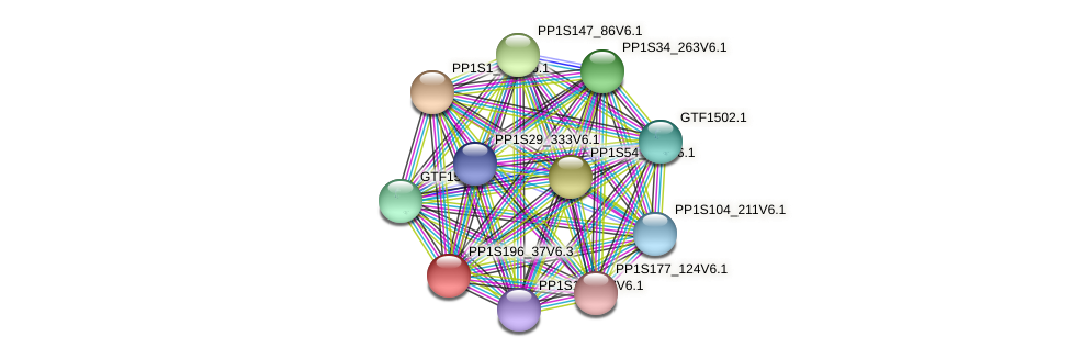 PP1S196_37V6.1 protein (Physcomitrella patens) - STRING interaction network