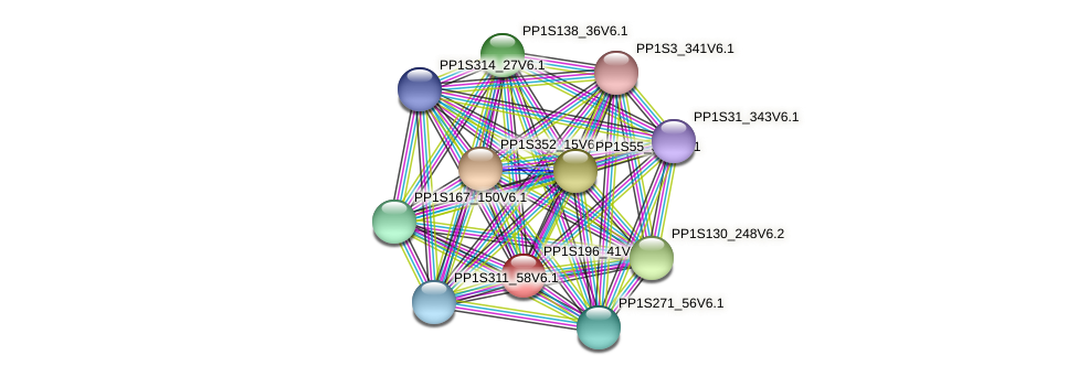PP1S196_41V6.1 protein (Physcomitrella patens) - STRING interaction network