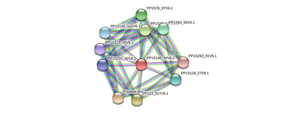 PP1S196_44V6.2 protein (Physcomitrella patens) - STRING interaction network