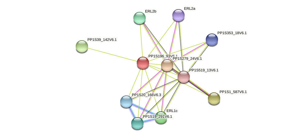 PP1S196_93V6.1 protein (Physcomitrella patens) - STRING interaction network