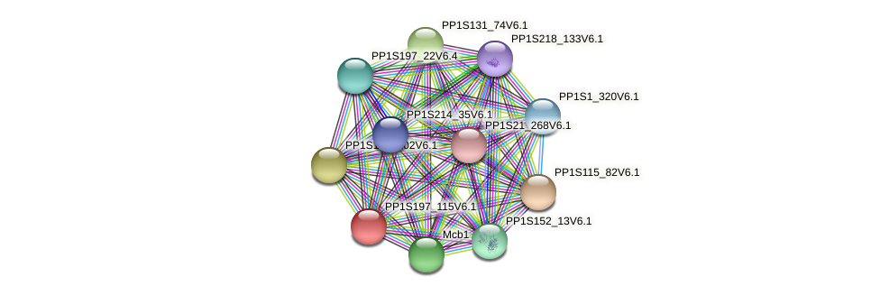 PP1S197_115V6.1 protein (Physcomitrella patens) - STRING interaction network