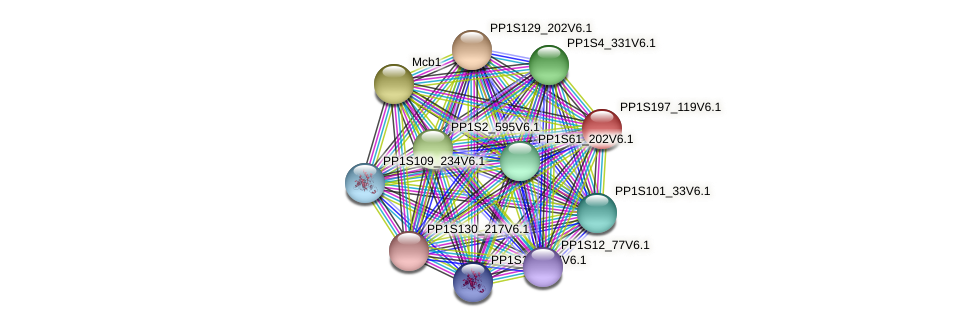 PP1S197_119V6.1 protein (Physcomitrella patens) - STRING interaction network