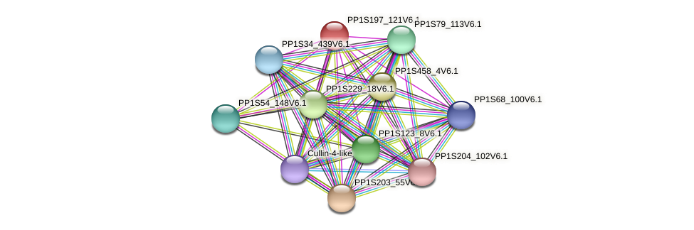 PP1S197_121V6.1 protein (Physcomitrella patens) - STRING interaction network