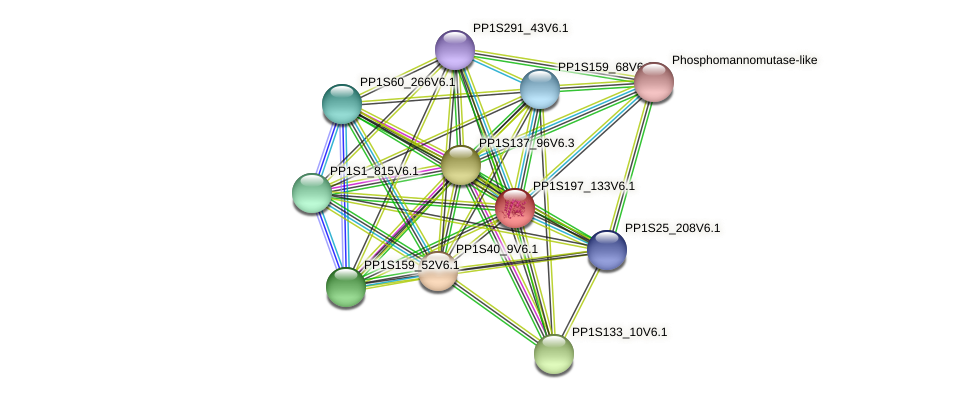 PP1S197_133V6.1 protein (Physcomitrella patens) - STRING interaction network