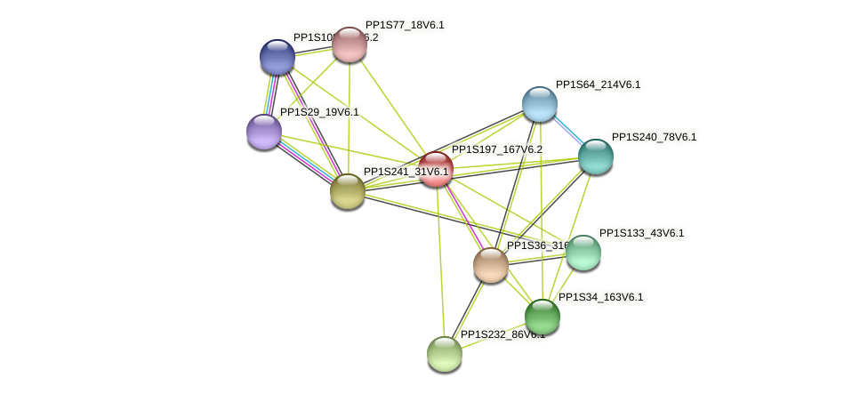 PP1S197_167V6.1 protein (Physcomitrella patens) - STRING interaction network