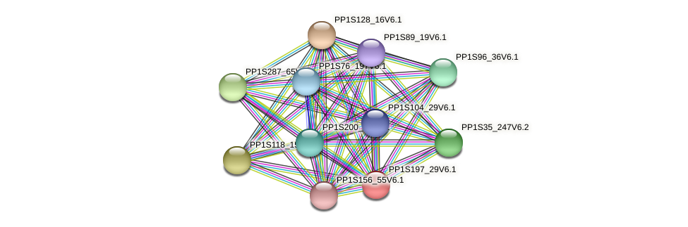PP1S197_29V6.1 protein (Physcomitrella patens) - STRING interaction network