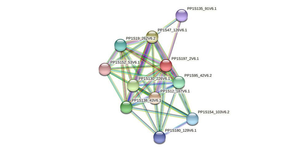 PP1S197_2V6.1 protein (Physcomitrella patens) - STRING interaction network