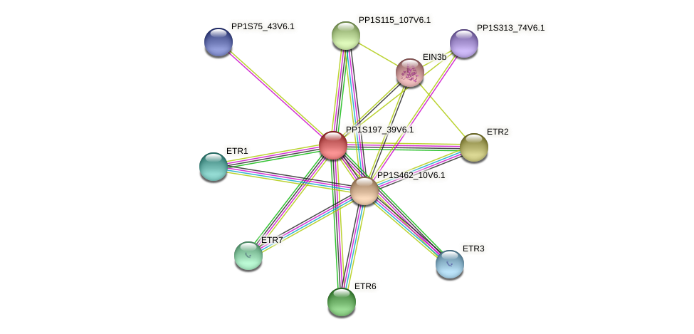 PP1S197_39V6.1 protein (Physcomitrella patens) - STRING interaction network