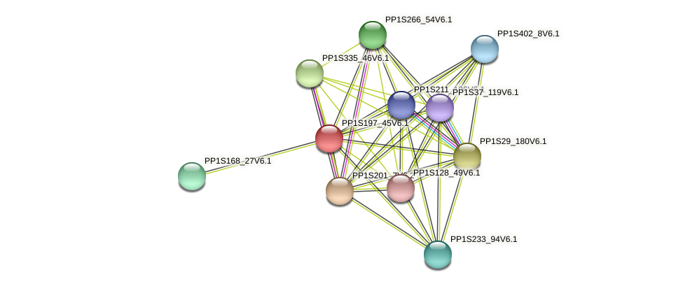 PP1S197_45V6.1 protein (Physcomitrella patens) - STRING interaction network