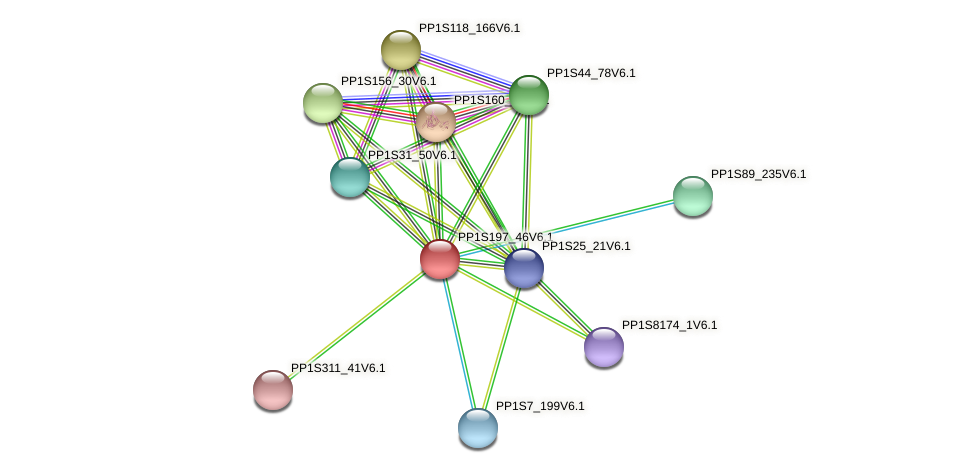 PP1S197_46V6.1 protein (Physcomitrella patens) - STRING interaction network