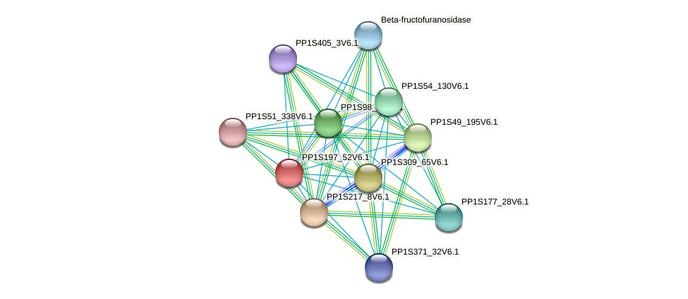 PP1S197_52V6.1 protein (Physcomitrella patens) - STRING interaction network