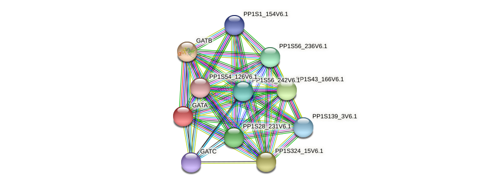 PP1S197_56V6.2 protein (Physcomitrella patens) - STRING interaction network